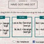 Ngữ pháp cơ bản – Bài 12: Have got/ has got