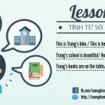 Học ngữ pháp cơ bản – Bài 7: Tính từ sở hữu với 's